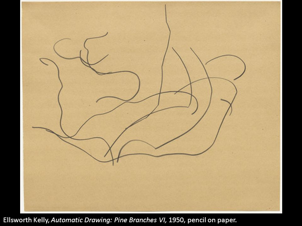 Ellsworth Kelly, Automatic Drawing: Pine Branches VI, 1950, pencil on paper.