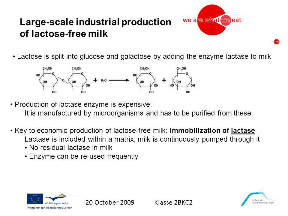20 October 2009 Klasse 2BKC2 Large-scale industrial production of lactose-free milk Lactose is split into glucose and galactose by adding the enzyme l
