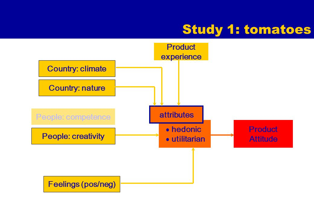 Study 1: tomatoes hedonic utilitarian attributes Country: nature Feelings (pos/neg) Product Attitude Product experience Country: climate People: competence People: creativity