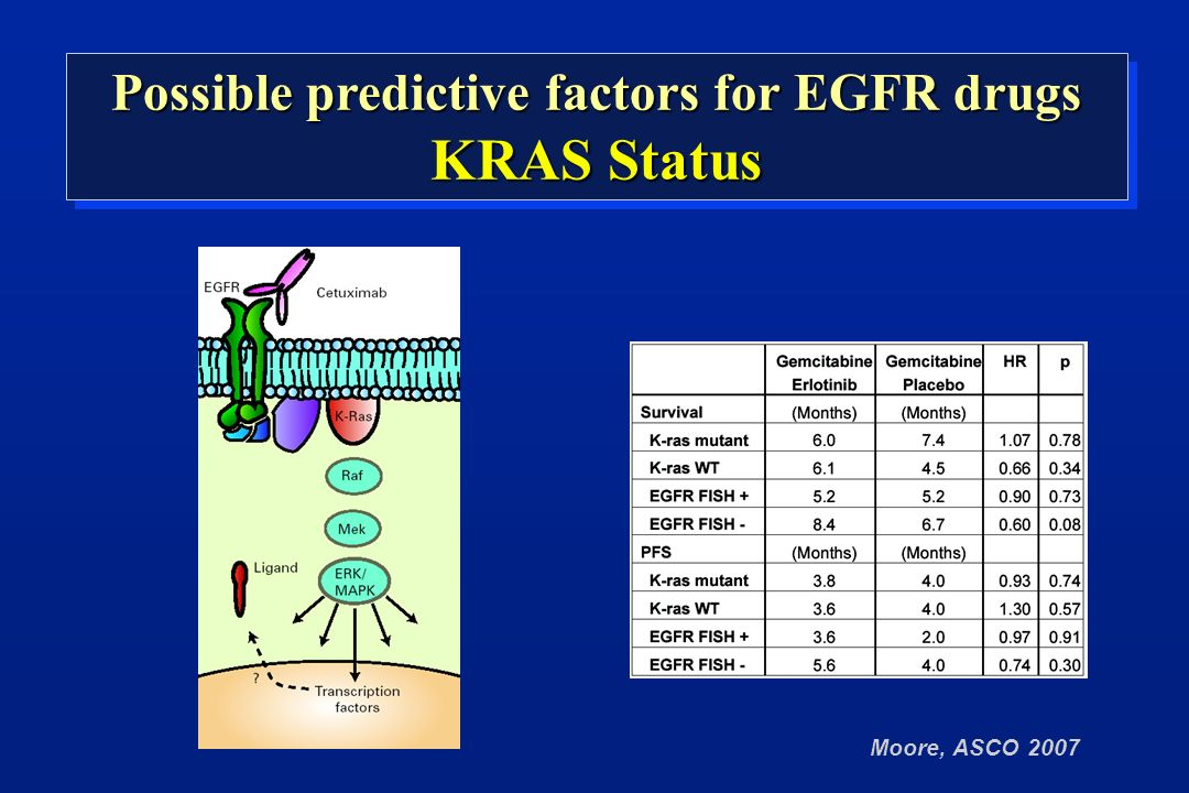Moore, ASCO 2007 Possible predictive factors for EGFR drugs KRAS Status Possible predictive factors for EGFR drugs KRAS Status