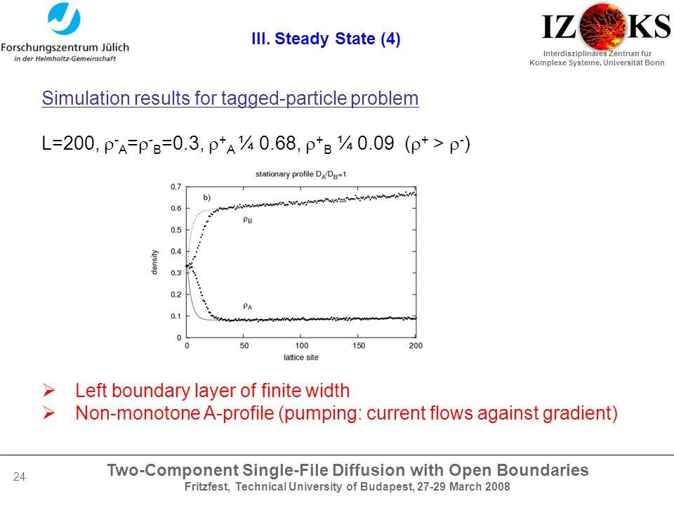 Two-Component Single-File Diffusion with Open Boundaries Fritzfest, Technical University of Budapest, 27-29 March 2008 Interdisziplinäres Zentrum für Komplexe Systeme, Universität Bonn 24 III.