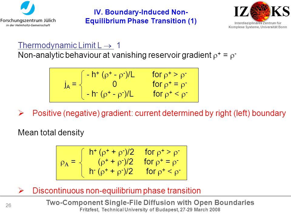 Two-Component Single-File Diffusion with Open Boundaries Fritzfest, Technical University of Budapest, 27-29 March 2008 Interdisziplinäres Zentrum für