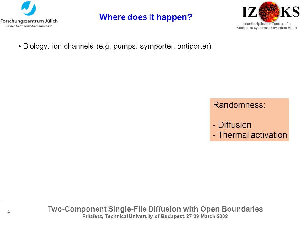 Two-Component Single-File Diffusion with Open Boundaries Fritzfest, Technical University of Budapest, 27-29 March 2008 Interdisziplinäres Zentrum für Komplexe Systeme, Universität Bonn 4 Where does it happen.