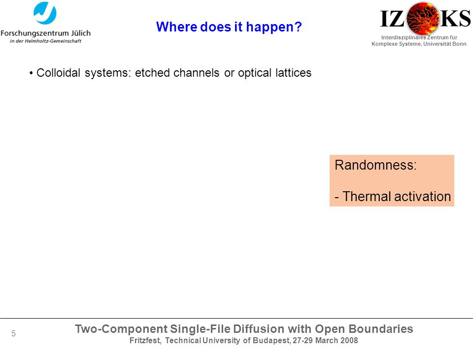 Two-Component Single-File Diffusion with Open Boundaries Fritzfest, Technical University of Budapest, 27-29 March 2008 Interdisziplinäres Zentrum für Komplexe Systeme, Universität Bonn 5 Where does it happen.