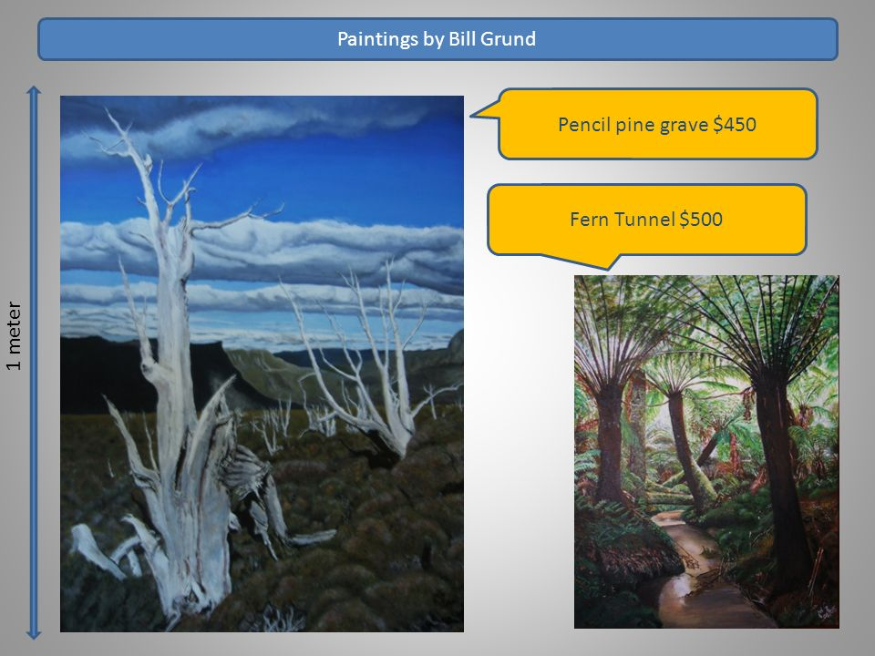 1 meter Paintings by Bill Grund Pencil pine grave $450 Fern Tunnel $500