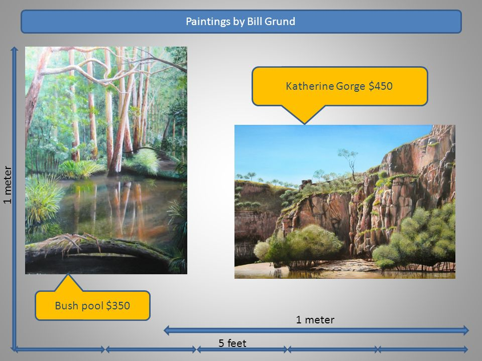1 meter Paintings by Bill Grund 1 meter 5 feet Katherine Gorge $450 Bush pool $350