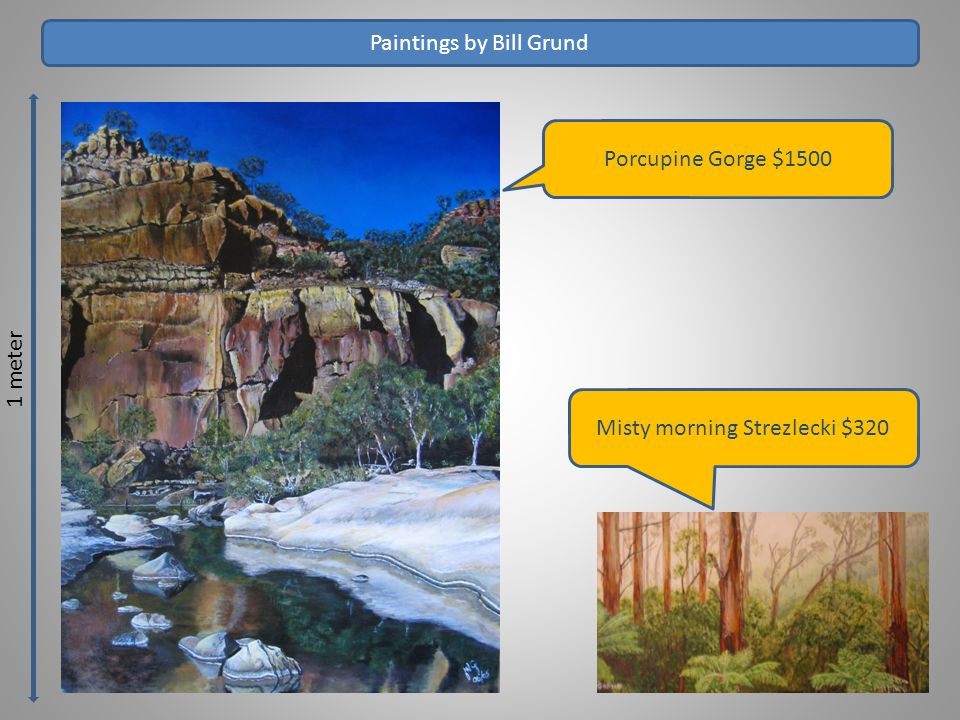 1 meter Paintings by Bill Grund Porcupine Gorge $1500 Misty morning Strezlecki $320