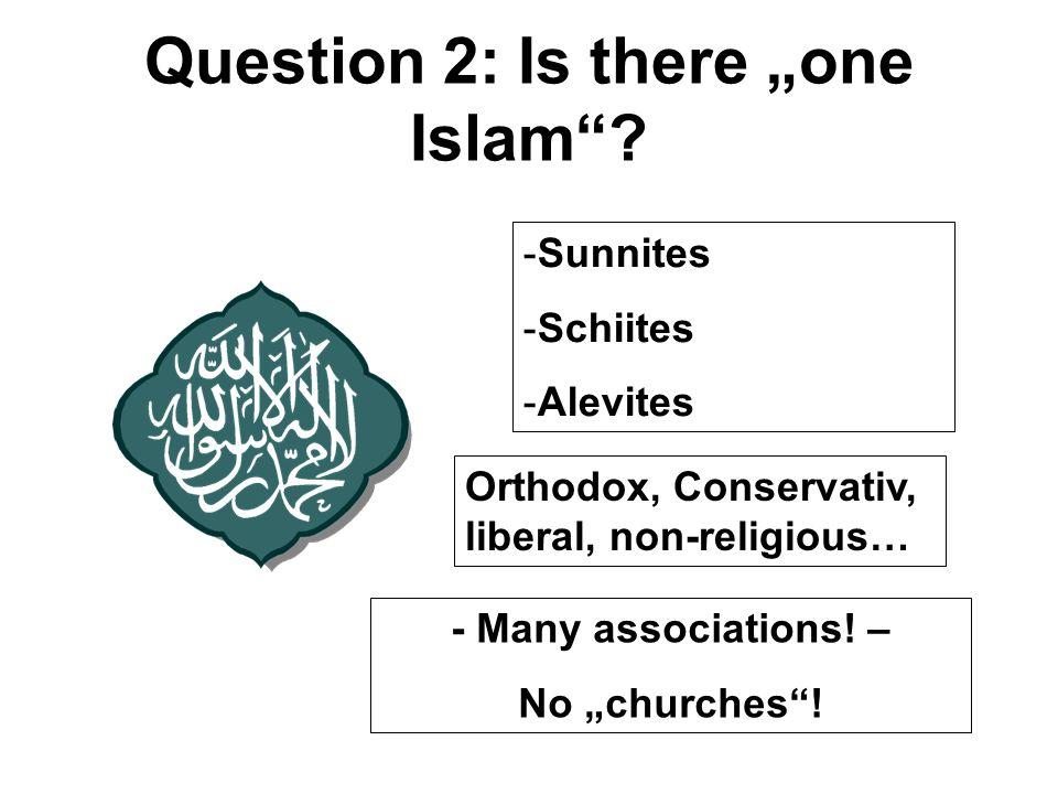 -Sunnites -Schiites -Alevites - Many associations.