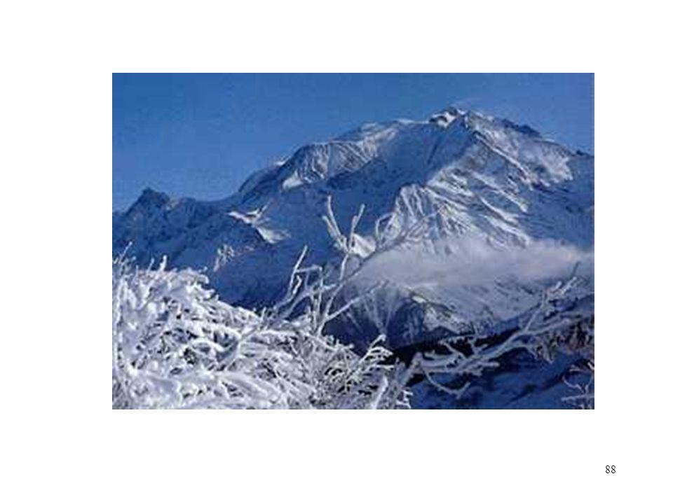 88 Mont Blanc (Tricot)