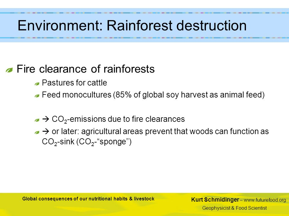 Kurt Schmidinger – www.futurefood.org Geophysicist & Food Scientist Global consequences of our nutritional habits & livestock Fire clearance of rainfo