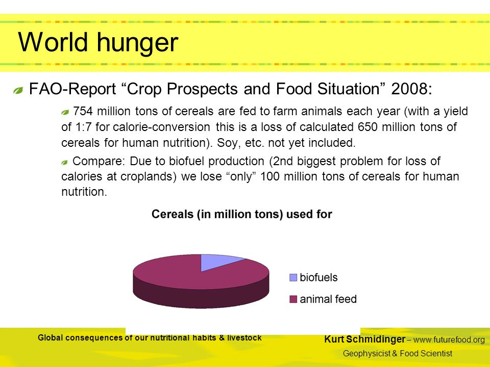 Kurt Schmidinger – www.futurefood.org Geophysicist & Food Scientist Global consequences of our nutritional habits & livestock World hunger FAO-Report