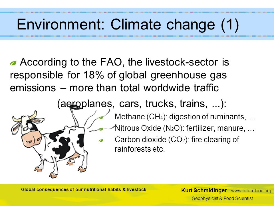 Kurt Schmidinger – www.futurefood.org Geophysicist & Food Scientist Global consequences of our nutritional habits & livestock < According to the FAO,
