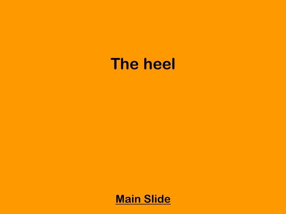 The heel Main Slide
