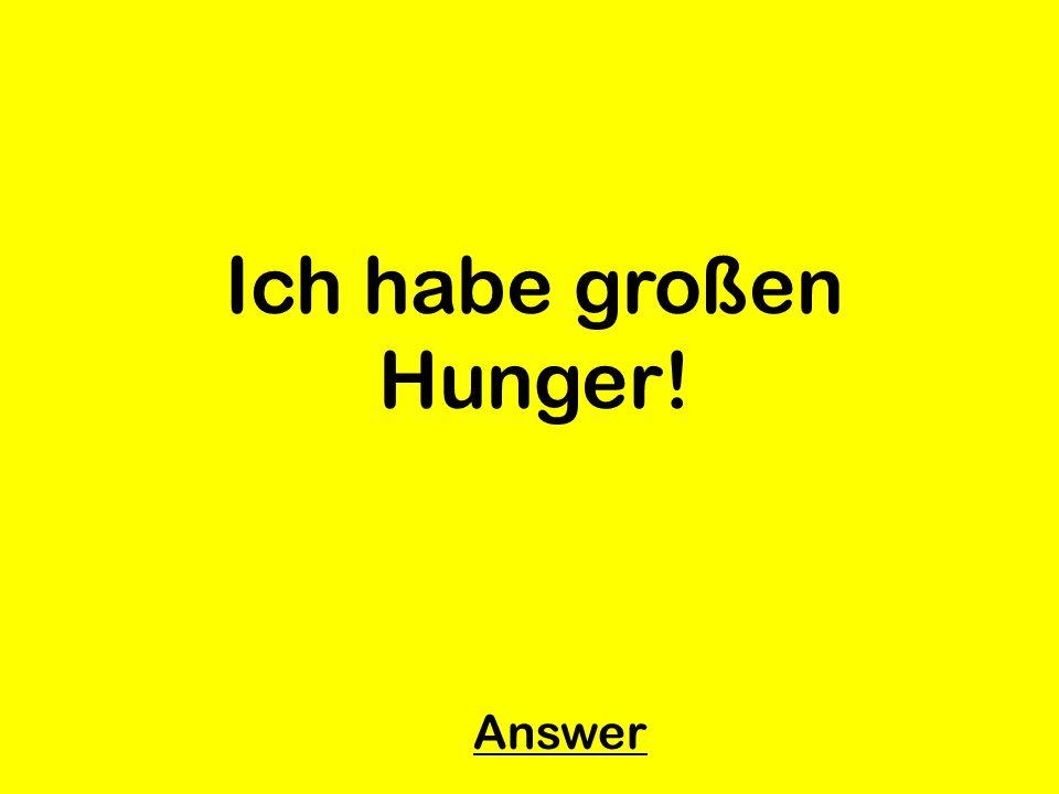 Ich habe großen Hunger! Answer