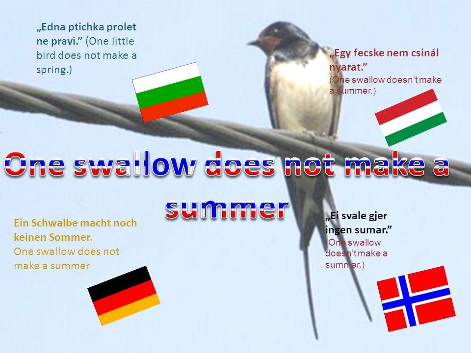 Edna ptichka prolet ne pravi. (One little bird does not make a spring.) Egy fecske nem csinál nyarat. (One swallow doesnt make a summer.) Ein Schwalbe