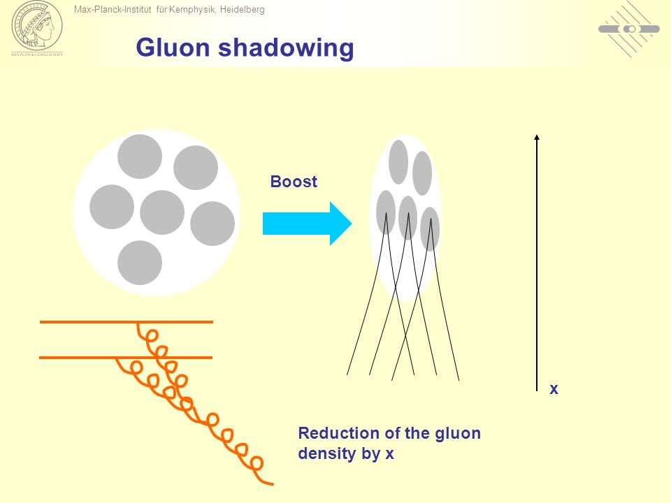Gluon shadowing x Boost Reduction of the gluon density by x