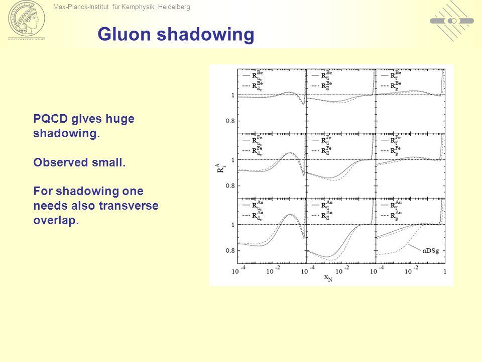 Max-Planck-Institut für Kernphysik, Heidelberg Gluon shadowing PQCD gives huge shadowing.