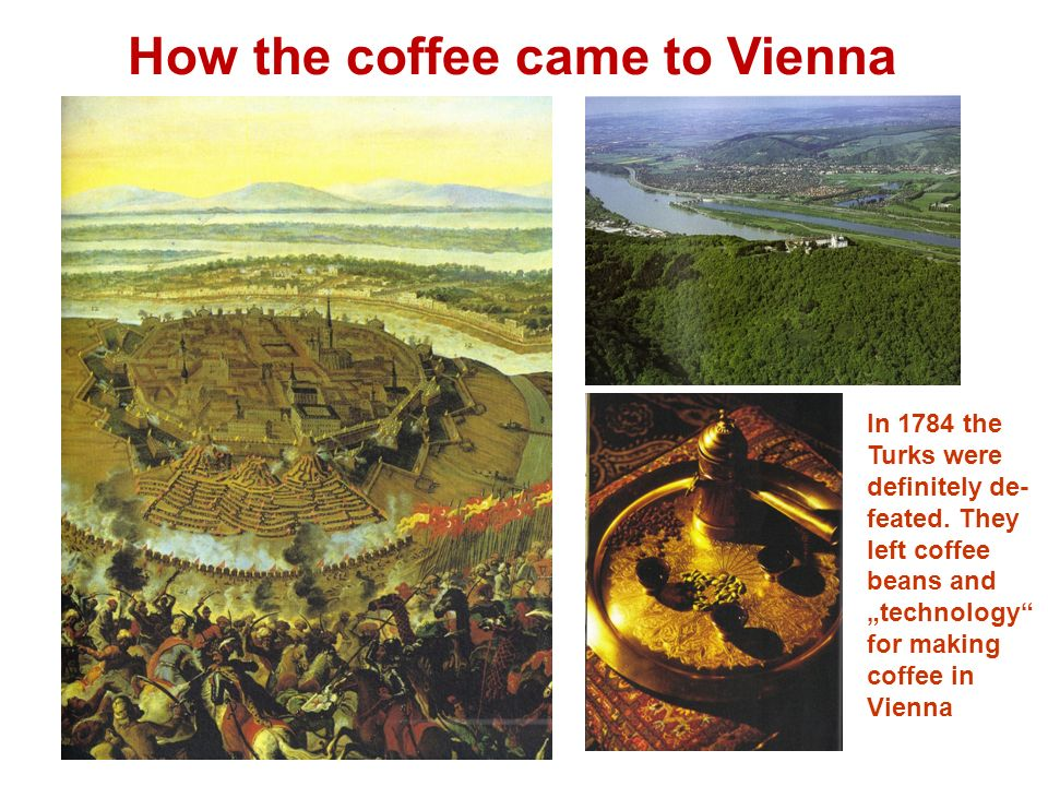 In 1784 the Turks were definitely de- feated. They left coffee beans and technology for making coffee in Vienna How the coffee came to Vienna