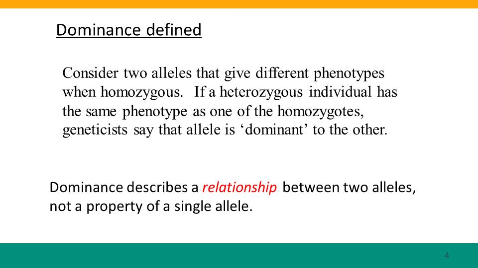Dominance defined Consider two alleles that give different phenotypes when homozygous. If a heterozygous individual has the same phenotype as one of t