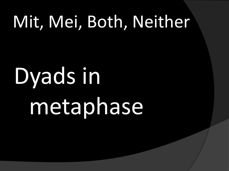 Mit, Mei, Both, Neither Dyads in metaphase