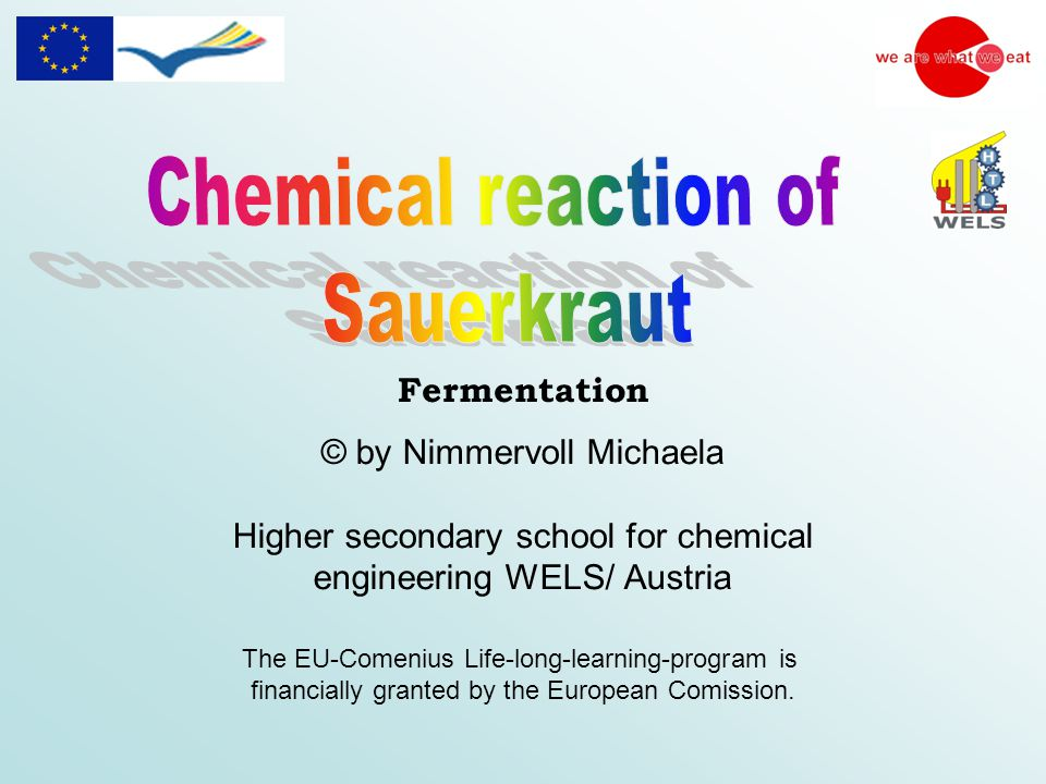 © by Nimmervoll Michaela Higher secondary school for chemical engineering WELS/ Austria The EU-Comenius Life-long-learning-program is financially granted by the European Comission.