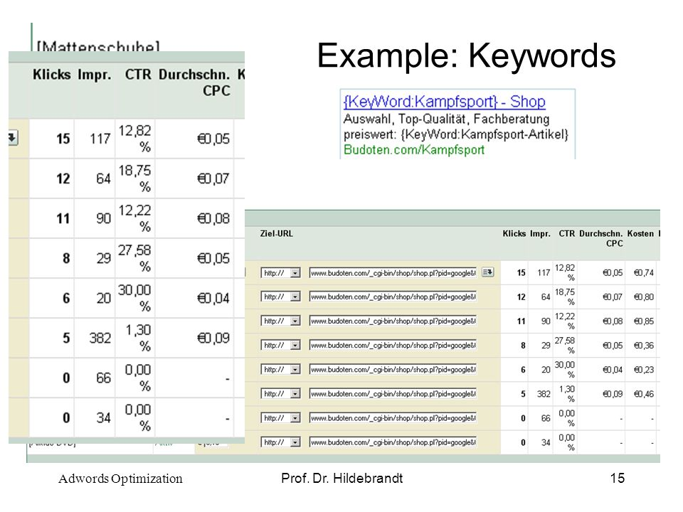 Prof. Dr. Hildebrandt15 Example: Keywords Adwords Optimization