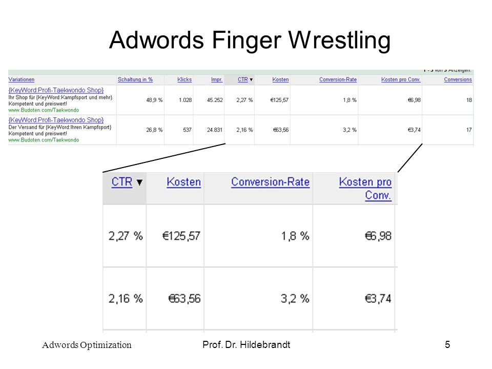 Prof. Dr. Hildebrandt5 Adwords Finger Wrestling Adwords Optimization