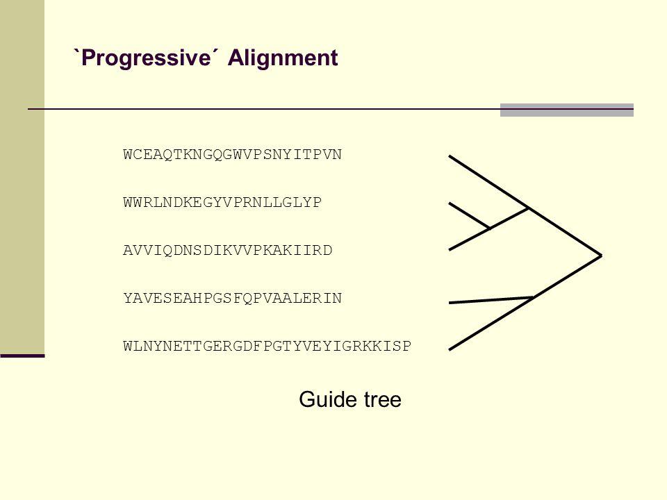 `Progressive´ Alignment WCEAQTKNGQGWVPSNYITPVN WWRLNDKEGYVPRNLLGLYP AVVIQDNSDIKVVPKAKIIRD YAVESEAHPGSFQPVAALERIN WLNYNETTGERGDFPGTYVEYIGRKKISP Guide tree