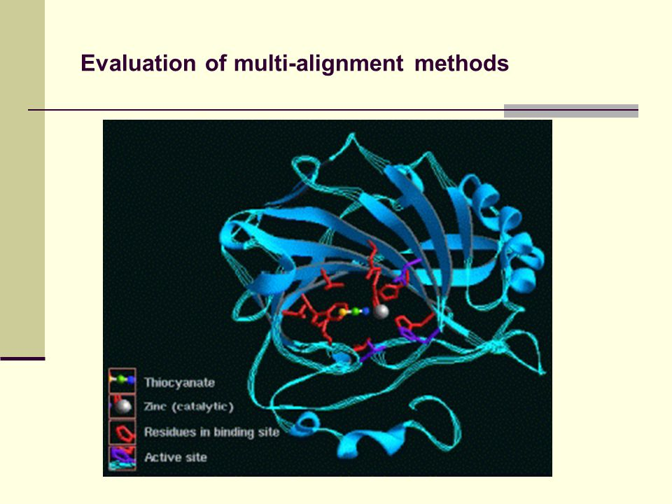 Evaluation of multi-alignment methods