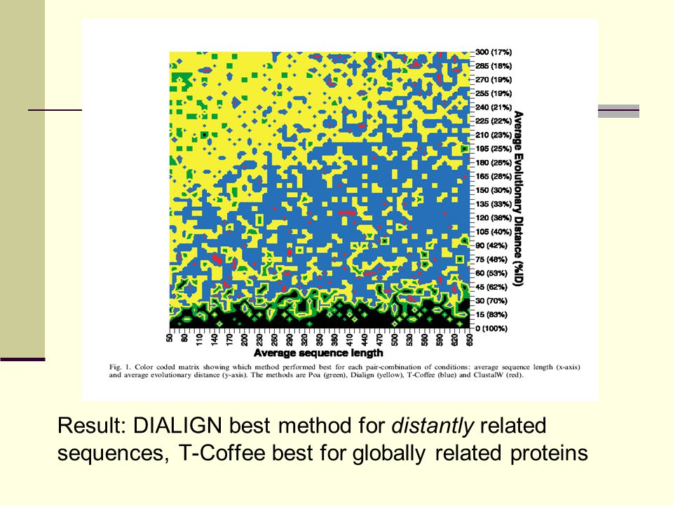 Result: DIALIGN best method for distantly related sequences, T-Coffee best for globally related proteins
