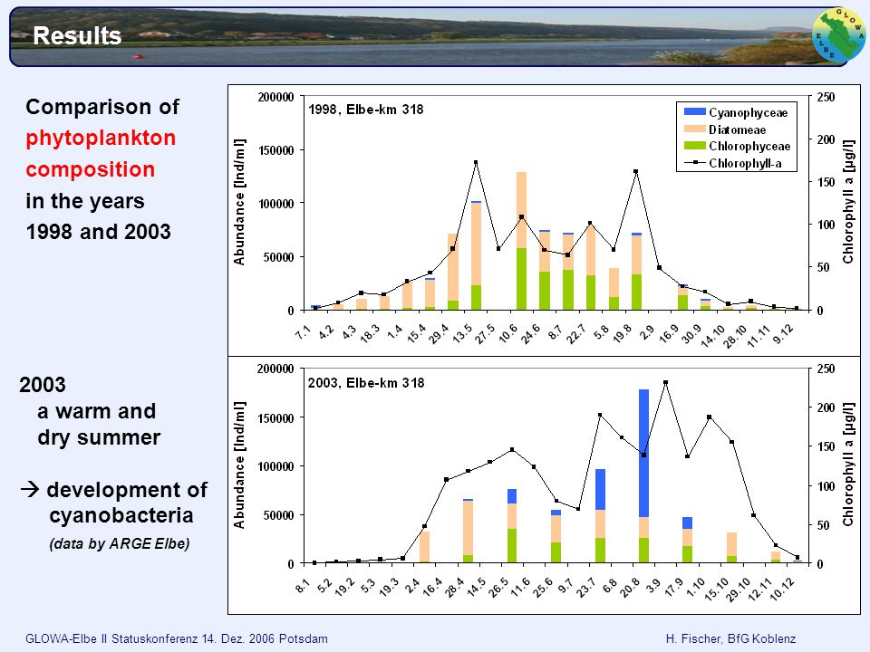 GLOWA-Elbe II Statuskonferenz 14. Dez. 2006 Potsdam H. Fischer, BfG Koblenz Results Comparison of phytoplankton composition in the years 1998 and 2003