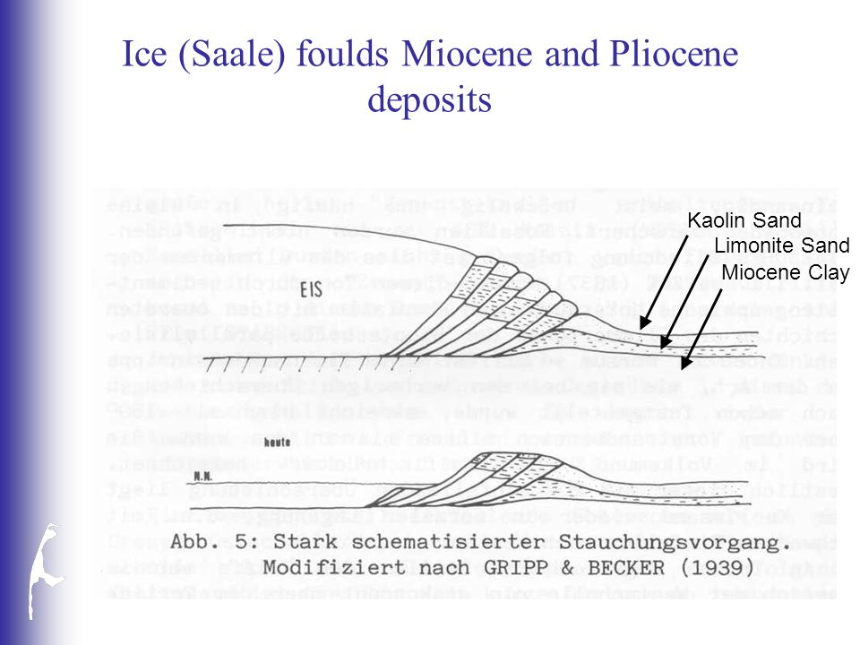 Ice (Saale) foulds Miocene and Pliocene deposits Kaolin Sand Limonite Sand Miocene Clay