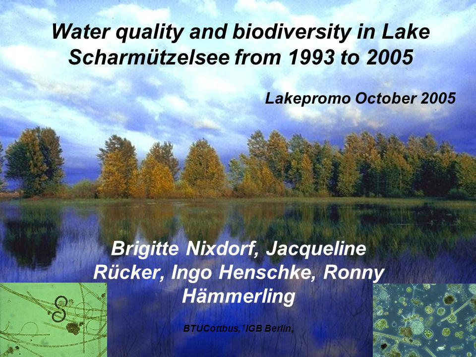 1.Since 1990 a drastic reduction of the external P load was calculated and measured 2.The current external P load of lake Scharmützelsee with 0.8 t a -1 P, estimated by the MONERIS model, is very low compared with the internal P release with 6.75 t a -1 P.