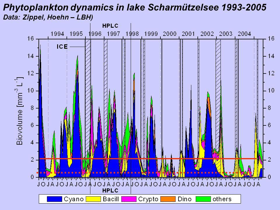 Good ecological status for lake Scharmützelsees (Phytoplankton Report (/2005) Biovolume [mm 3 L -1 ] *:0.5 – 2 Chl a [µg L -1 ] *:2.5 – 10 Considering the trophic state from good ecol.