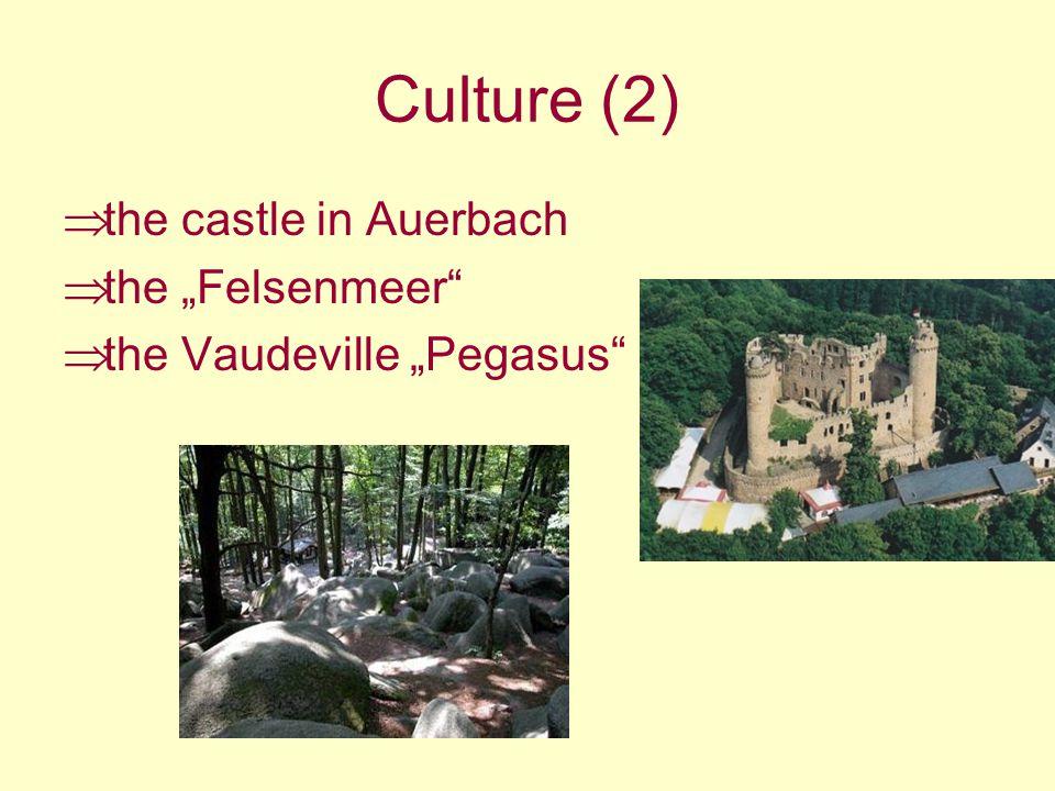 Culture (2) the castle in Auerbach the Felsenmeer the Vaudeville Pegasus