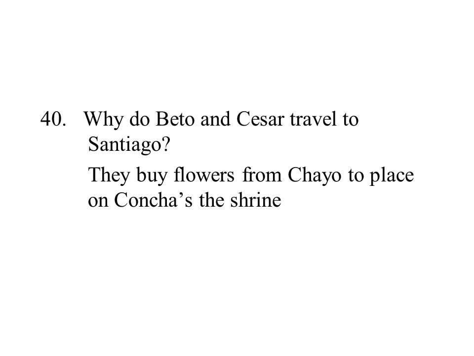 40. Why do Beto and Cesar travel to Santiago? They buy flowers from Chayo to place on Conchas the shrine