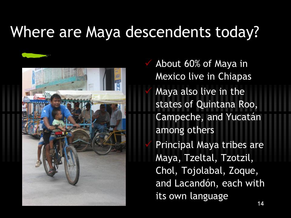 14 Where are Maya descendents today.