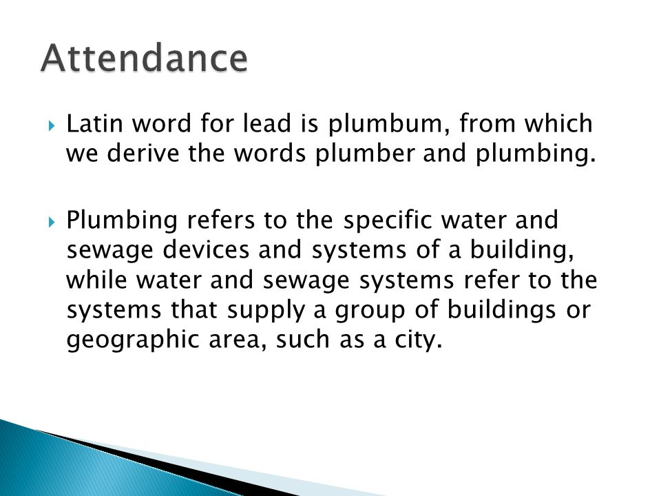Where did the word plumbing come from? A) A man with paints hanging down and his crack showing B) A Roman C) A Greek D) The Plumb Bob