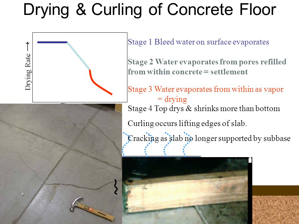 Drying & Curling of Concrete Floor Time Drying Rate Stage 1 Bleed water on surface evaporates Stage 2 Water evaporates from pores refilled from within concrete = settlement Stage 3 Water evaporates from within as vapor = drying Stage 4 Top drys & shrinks more than bottom Curling occurs lifting edges of slab.