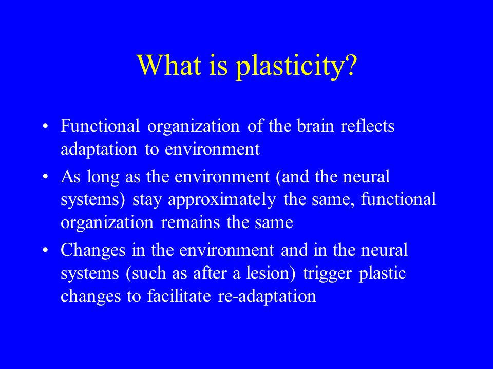 What is plasticity.