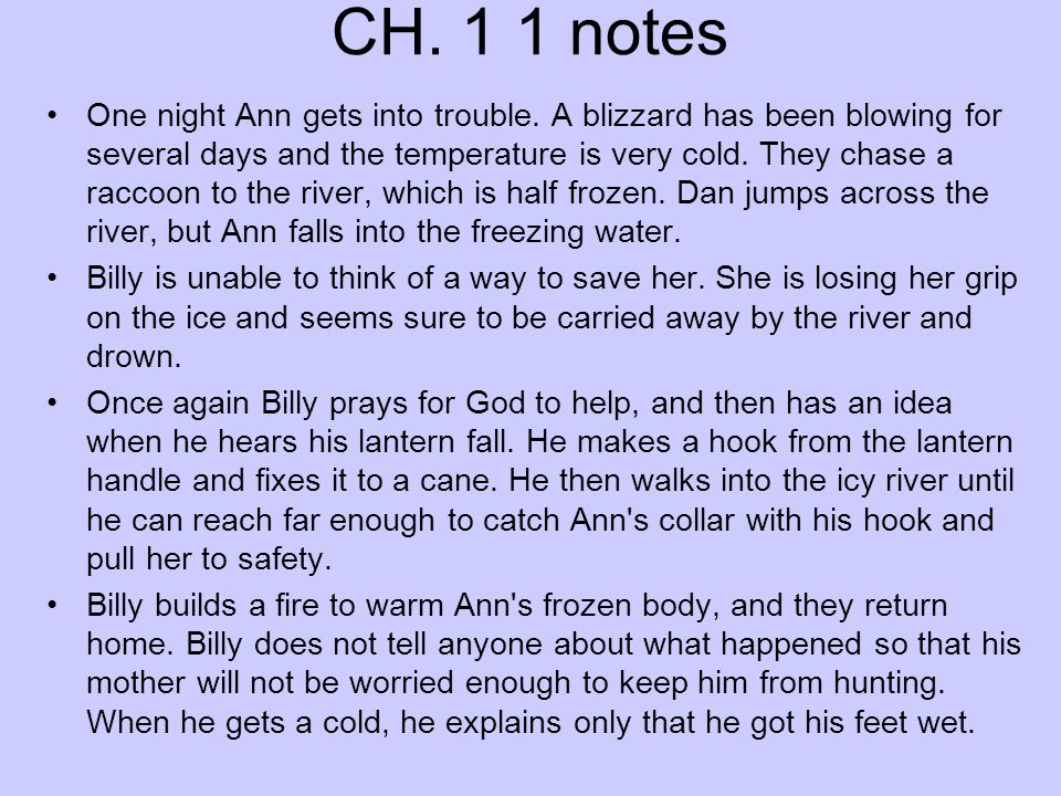 CH. 1 1 notes One night Ann gets into trouble. A blizzard has been blowing for several days and the temperature is very cold. They chase a raccoon to