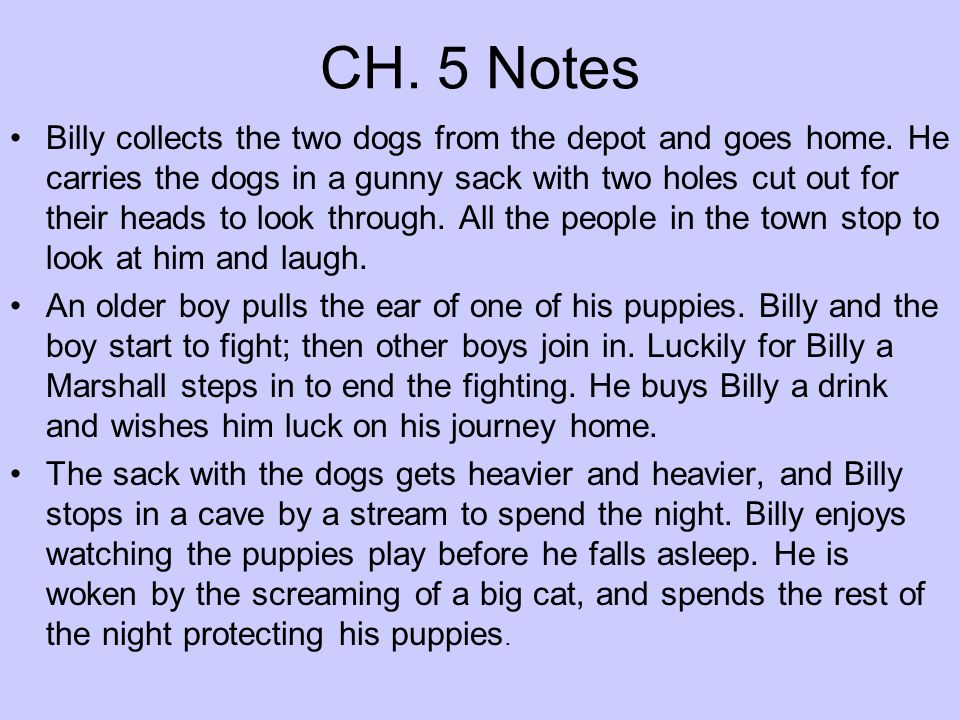 CH. 5 Notes Billy collects the two dogs from the depot and goes home. He carries the dogs in a gunny sack with two holes cut out for their heads to lo