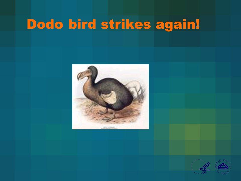 Dodo bird strikes again!