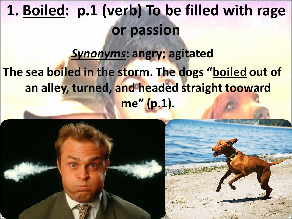 1. Boiled: p.1 (verb) To be filled with rage or passion Synonyms: angry; agitated The sea boiled in the storm. The dogs boiled out of an alley, turned