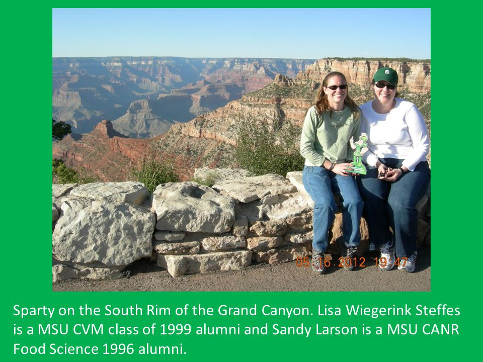 Sparty on the South Rim of the Grand Canyon. Lisa Wiegerink Steffes is a MSU CVM class of 1999 alumni and Sandy Larson is a MSU CANR Food Science 1996