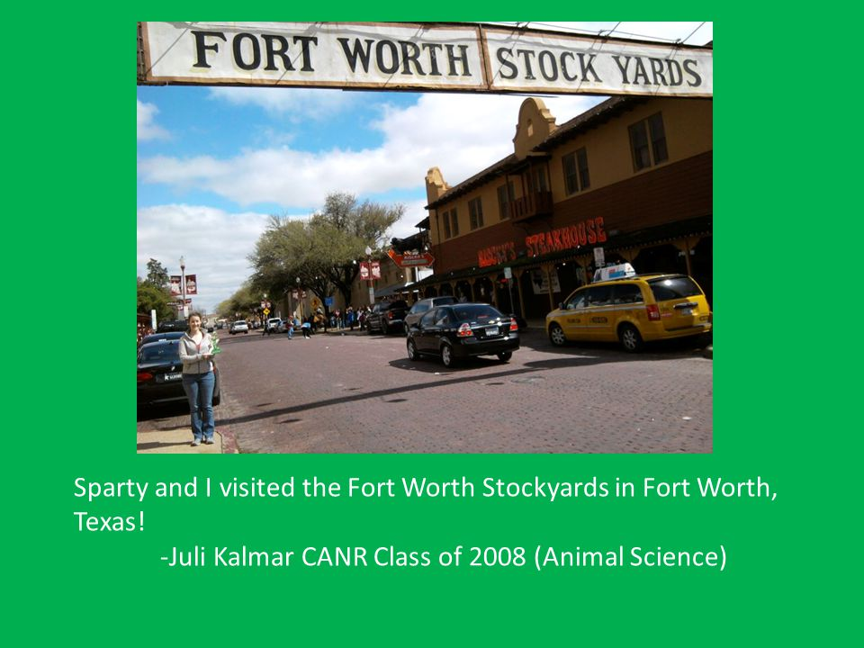 Sparty and I visited the Fort Worth Stockyards in Fort Worth, Texas! -Juli Kalmar CANR Class of 2008 (Animal Science)