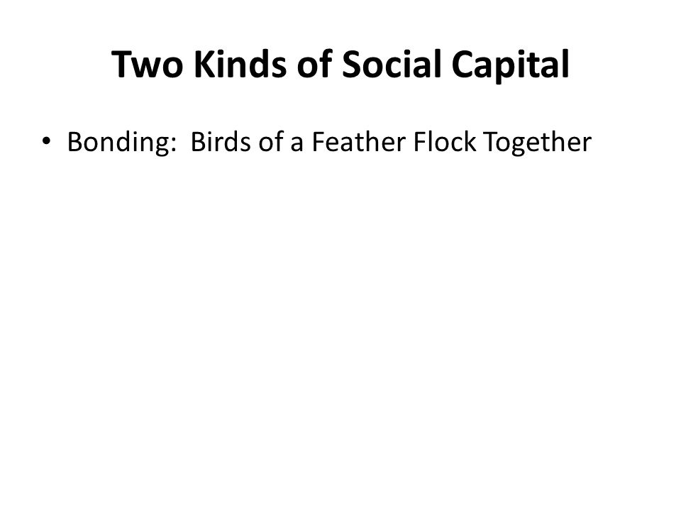 Two Kinds of Social Capital Bonding: Birds of a Feather Flock Together