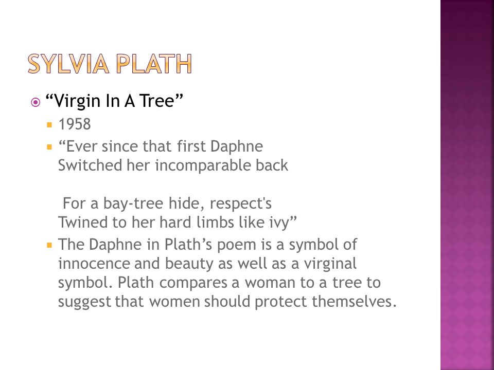 Virgin In A Tree 1958 Ever since that first Daphne Switched her incomparable back For a bay-tree hide, respect's Twined to her hard limbs like ivy The