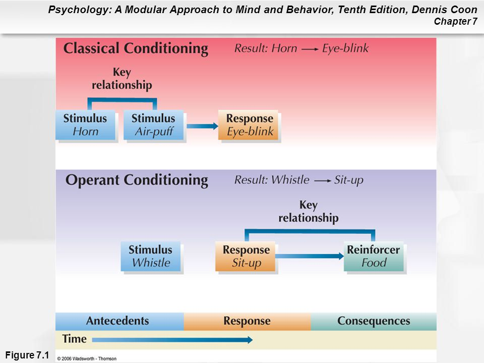 Psychology: A Modular Approach to Mind and Behavior, Tenth Edition, Dennis Coon Chapter 7 Figure 7.1
