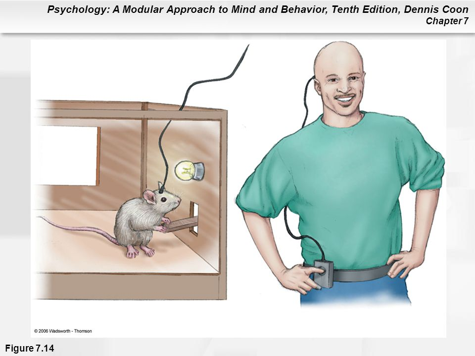 Psychology: A Modular Approach to Mind and Behavior, Tenth Edition, Dennis Coon Chapter 7 Figure 7.14